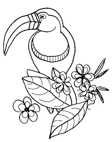 coloring pages printable preschool coloring pages zoo