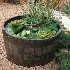 Plantes Vivaces Autour D Un Bassin : plantes aquatiques bassin exterieur ~ Melissatoandfro.com Idées de Décoration