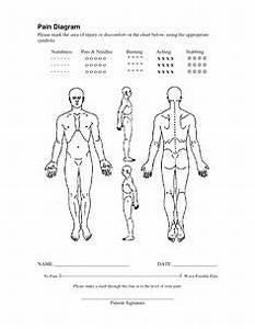 Diagram Of Torso Pain : vas pain diagram defectuex pinterest ~ A.2002-acura-tl-radio.info Haus und Dekorationen