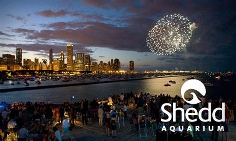 jazzin at the shedd shedd aquarium in chicago illinois groupon