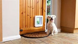 dog door timer lock choice image doors design modern With dog house with door lock