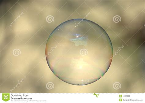 Clear Soap Bubble On Light Backdrop Stock Photo  Image Of. Apply For Cal Grant Online Utsa Virtual Tour. Technical School Los Angeles. Crc College Sacramento Family Office Research. Colleges In Downtown Boston The Outter Banks. Invoice Management System Debt Advisory Group. Carpet Cleaning Inland Empire. Credit Cards With Instant Approval Online. Locksmith Grand Junction Co Cheap Linux Vps