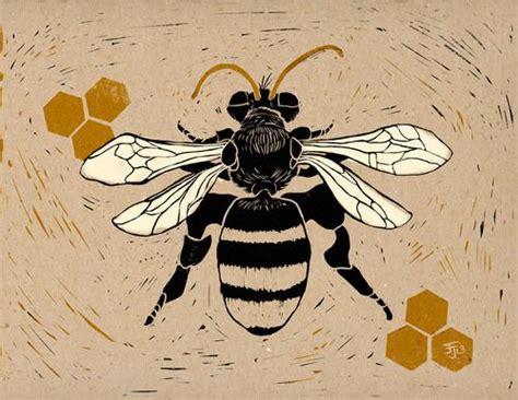 honey bee scientific illustration google search bee