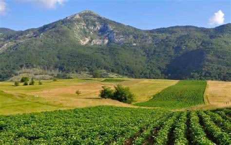 Production Land Profits | Fay Ranches