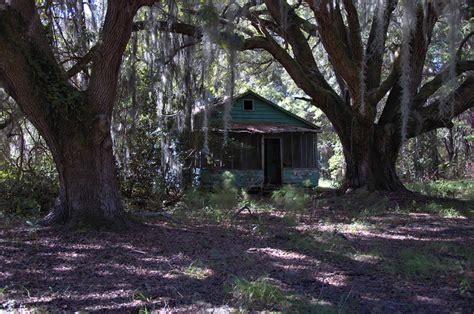 Hog Hammock by Houses Of Hog Hammock Vanishing Coastal