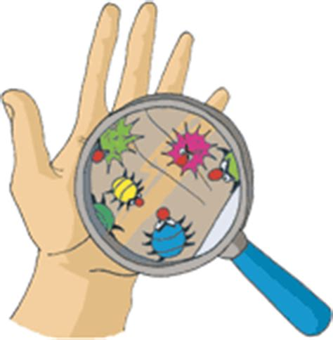 protocole de lavage des mains en cuisine hygiène le lavage des mains abcd