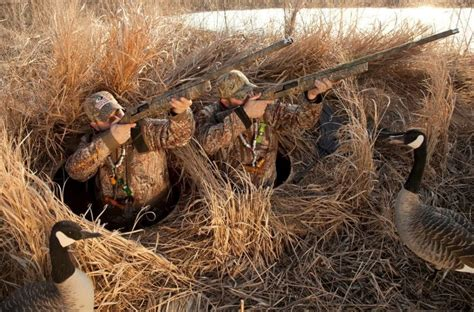 Duck Hunting Boat Blind Tips by How To Build A Duck Blind Diy Guide And Expert S Advice