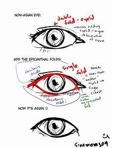 Asian vs. Western Eyes by sinemoras on DeviantArt