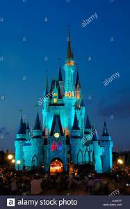 magic kingdom castle at night orlando florida usa america ...