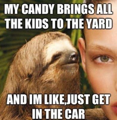 Funny Sloth Memes - sloth memes sloth memes too funny sloth hahahaha pinterest sloth memes funny
