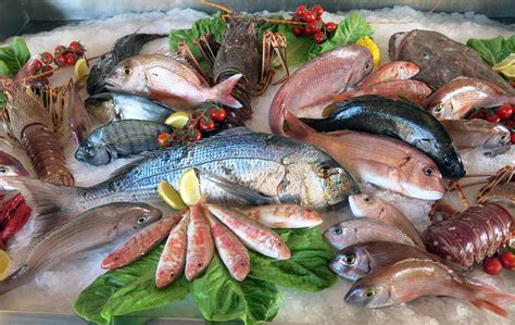 where to get fresh seafood the dilemma when we eat fish amoils com