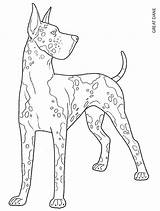 Dane Coloring Pages Dog Dogs Adult Animal Draw Printable Colouring Easy Drawings Breed Books Dover Publications Animals Creative Drawing German sketch template