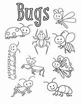Bugs Coloring Sheets Preschool Activities Bug Insect Kindergarten Worksheets Spring Funnycrafts Insects Printable Different Craft Dibujos Spider Animal Drawing Week sketch template