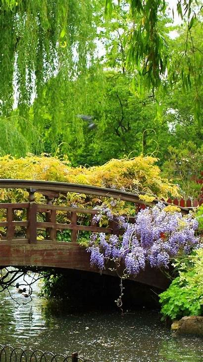 Iphone Flowers Plus Android Trees Bridge Wooden