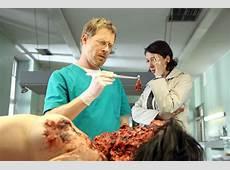 Pathologen Kaum noch Leichen im Keller Krankheit