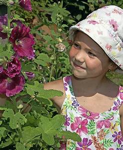 Welche Blumen Für Bienen : ein garten f r bienen und v gel gundelfingen badische zeitung ~ Eleganceandgraceweddings.com Haus und Dekorationen