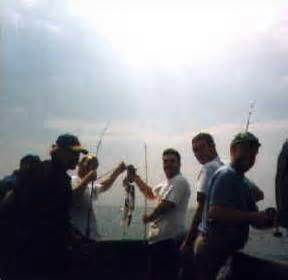 Fishing Boat Hire Eastbourne by Hire The Panther Charter Fishing Boat Eastbourne