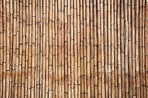 Dry bamboo wall texture background Stock Photo Colourbox