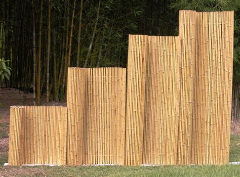 pictures of bamboo fences bamboo australia 187 bamboo fences screens trellises