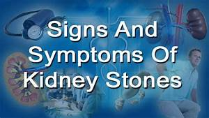 Signs And Symptoms Of Kidney Stones In Men And Women - YouTube