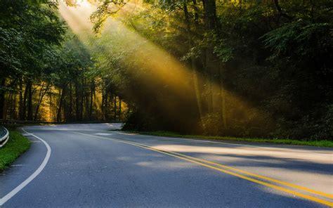 sunshine wallpaper forest road hd desktop wallpapers  hd