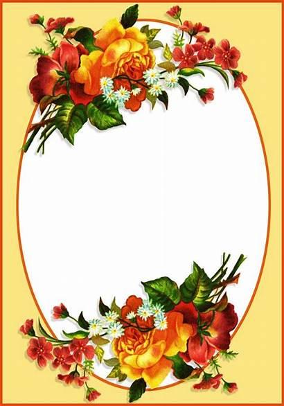 Borders Frames Flower Clipart Border Oval Frame