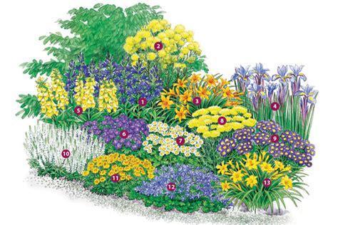 Eine Sommerliche Rabatte  Stauden Blumengarten