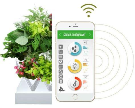 Go Green Mit Plant 36 Pflanzenarten Fuer Wandbegruenung In Heim Und Buero by Go Green Mit Plant 36 Pflanzenarten F 252 R