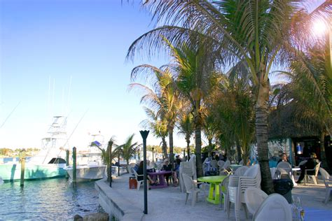 square jupiter grouper tiki bar florida fl bars tikibar beach open marijuana north floating buffett jimmy