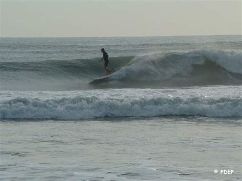 lucie state pierce inlet fort florida fl st park fish surfing parks catch county national surfer