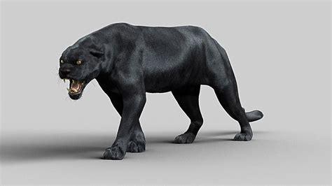 panther maya  model animated rigged ma mb stl cgtradercom
