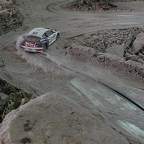 Rally Action ....