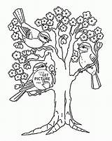 Coloring Seasons Tree Trees Blooming Printables Wuppsy Season Four Printable Drawing Template Bird Sheets Cherry Blossom Templates Tattoo Owl Justcoloringbook sketch template