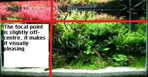 Guide To Aquascaping by A Guide To Aquascaping The Planted Aquarium