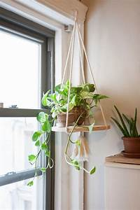 indoor hanging planters Best 25+ Indoor hanging plants ideas on Pinterest ...