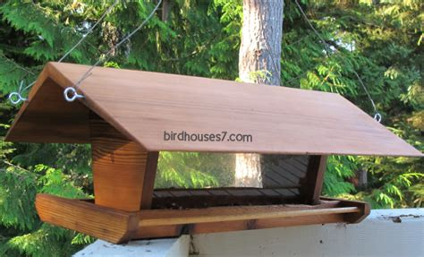 bird feeder designs bird houses research tuin