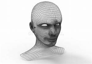 Human Head  Wire Frame Render Stock Illustration