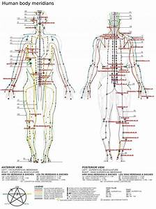 The Truth About Pressure Points  Which Ones Can Kill You