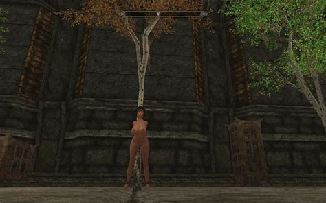 zaz animation pack v8 0 plus page 95 downloads skyrim adult and sex mods loverslab