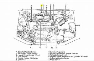 Diagram Of 3 4 Engine Compartment