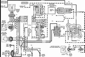 Beautiful Forest River Rv Wiring Diagrams