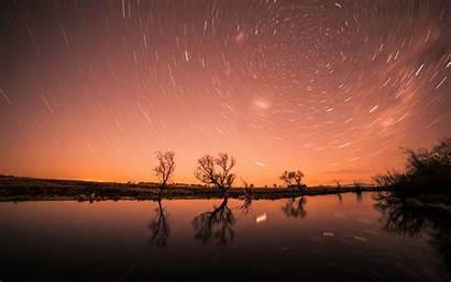 Starry Sky Trees Stars Night Shine Background