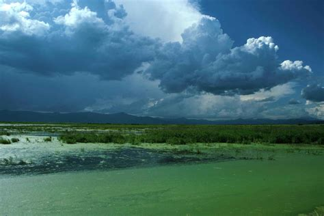 File:Blue skies above the green water landscape.jpg ...