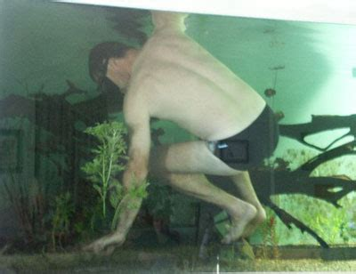 poisson aquarium amazonien eau douce un bac de 4000 litres eau douce divers aquarium webzine l aquariophilie d eau douce et d