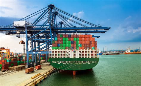 uncounted cost  shippings environmental impact