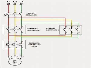 Reversing Motor Starter Wiring Diagram