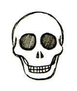 draw skulls easy step  step instructions