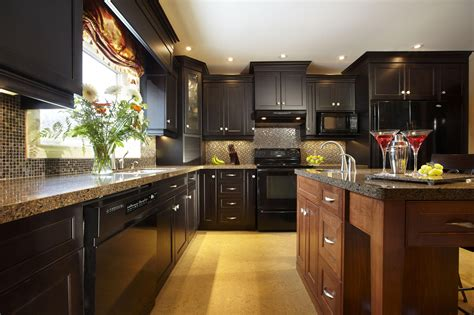 kitchen design pictures and ideas understanding the traditional vs transitional kitchen 7957