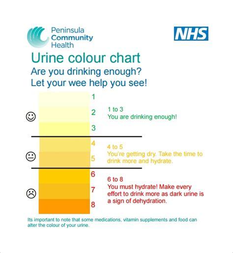 sample urine color charts  sample templates