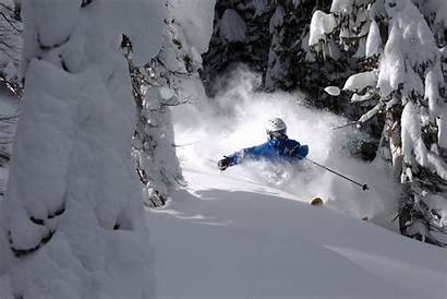 Skiing Powder Unofficialnetworks